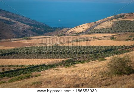 View of Galilee mountains, agriculture valley. North Israel.