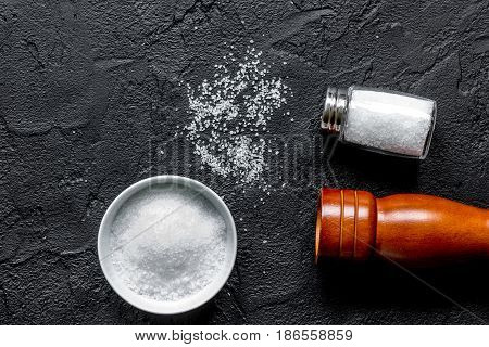 Spices set with salt and saltcellar for cooking on stone kitchen table background top view