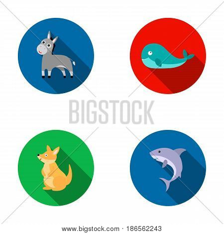 Donkey, whale, kangaroo, shark.Animal set collection icons in flat style vector symbol stock illustration .