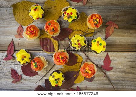 horizontal image of an assortment of cupcakes with yellow and orange icing with candy on top placed on colourful fall leaves on a rustic wood background great for thanksgiving snacks.