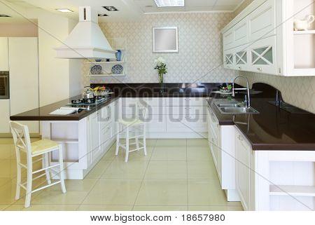 Modern white kitchen. Indoor design.