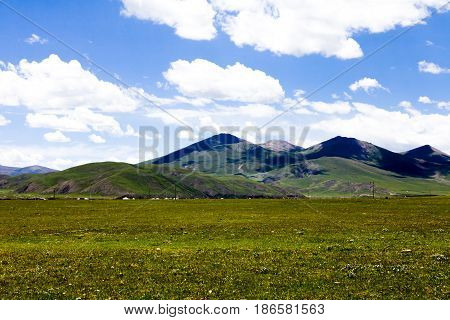 Green Tibet landscape on sunny day with color filter