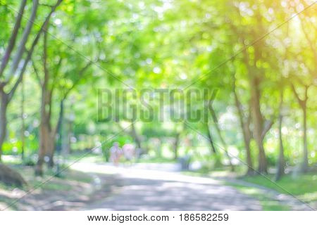 Blur park with golden and bokeh light background nature garden spring and summer season