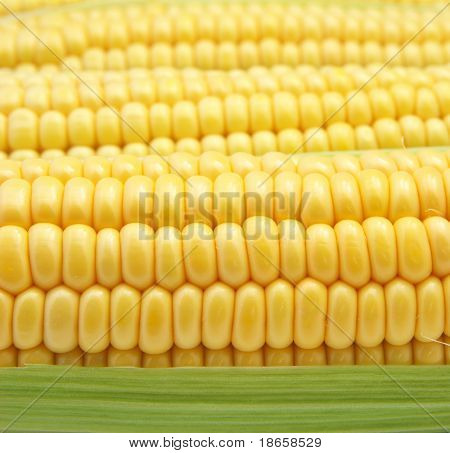 Isolated corn. Healthy eating. Element of design.