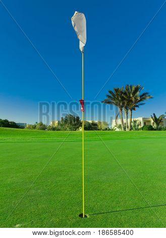 Golf Flag Stirred By The Wind