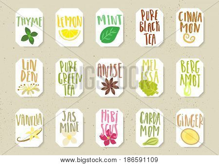 Vector set of trendy paper tags for tea packing. Various natural organic additives for drinks with handwritten annotation and sketches of plants.