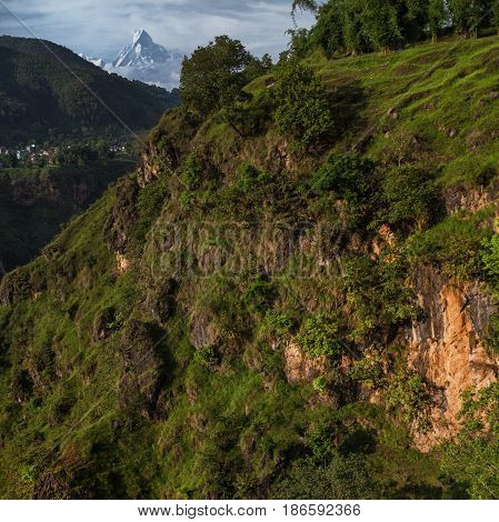 Beautiful Landscape With The Wooded Canyon And Mount Kailash
