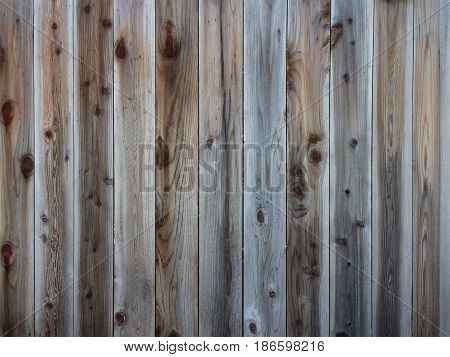 Wood Fence Texture Background. Weathered old lumber.