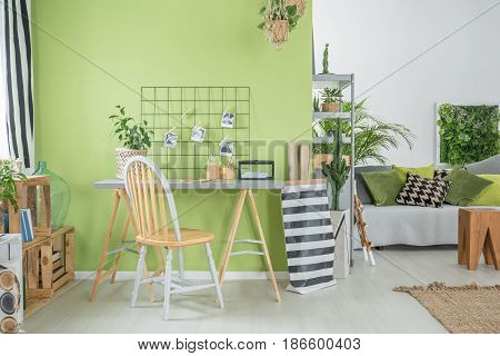 Room With Green Wall