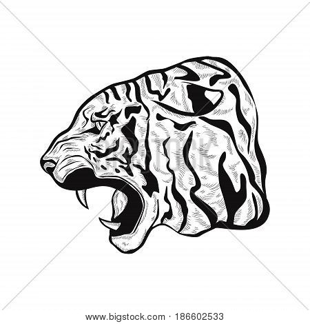 hand drawn stylized Tiger head anger. Black tattoo. Vector illustration of a tiger head. outline illustration.