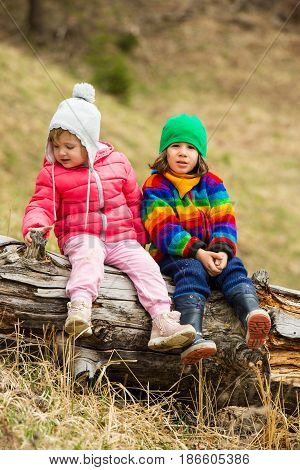 Portrait of two little kids sitting on an old tree trunk in nature