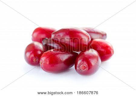 Ripe cornel berry isolated on white background