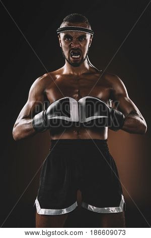 Aggressive Muay Thai Fighter With Boxing Gloves Looking At Camera, Boxing Gloves Fight Concept