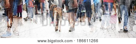 City walk double exposure of a large crowd of people and a dog in panorama banner format abstract concept for social issues urban life or shopping for website header