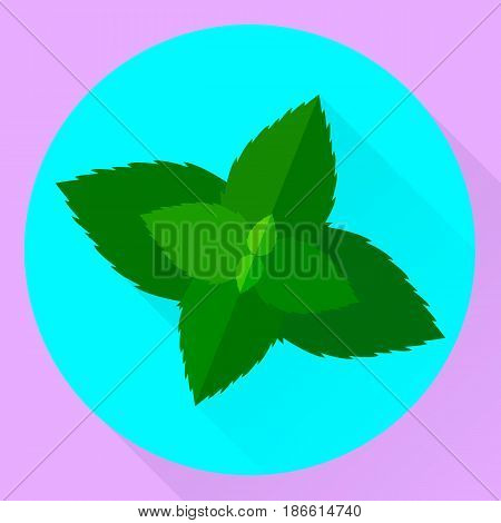 Vector Flat Icon Mint Leaves, Green, Blue