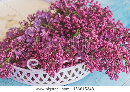 Bouquet Of Violet Lilac In The Violet Tray, Soft Focus Background