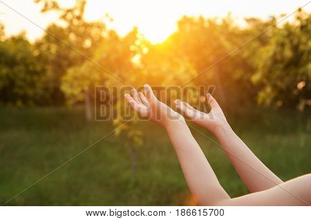Human hands open palm up worship. Eucharist Therapy Bless God Helping Repent Catholic Easter Lent Mind Pray. Christian concept background. victory