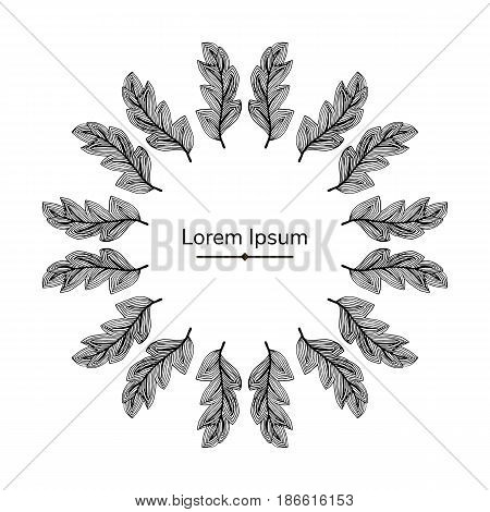 vector black frame feathers with text abstract