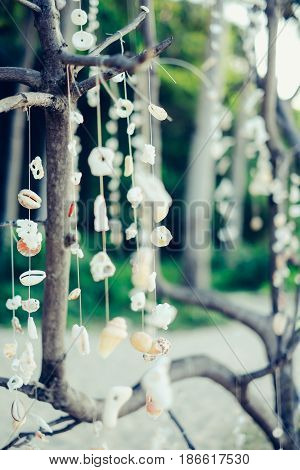 Decorative shells and corals hanging from the tree brunches on the beach