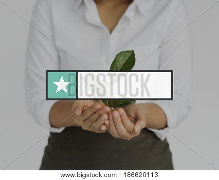 Star Favorite Box Banner Graphic
