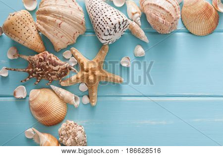 Sea vacation. Seashells frame on blue wood background with copy space on wooden planks, top view