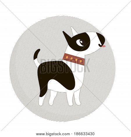 Cute bull terrier dog in a circle on a white background