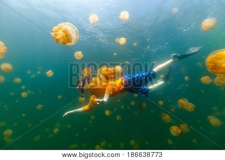 Underwater photo of child diving with endemic stingless jellyfish in lake at Palau. Snorkeling in Jellyfish Lake is a popular activity for tourists to Palau.