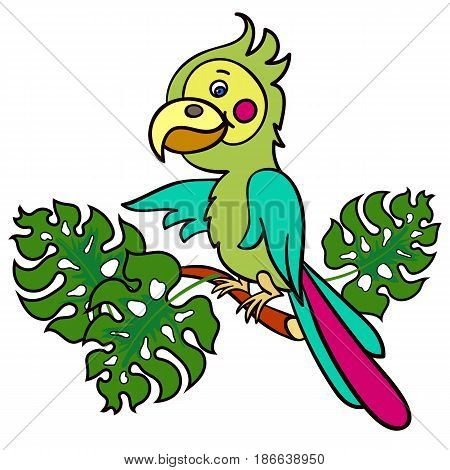 A bright green parrot on a branch with leaves.Vector illustration for children.Cute cartoon Bird with a big beak on a white background.The isolated image.