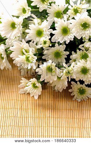 gerbera , gerbera daisies on bamboo mat
