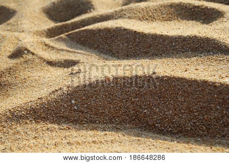 Travel To Island Phuket, Thailand. The View Of A Sandy Beach On A Sunny Day.