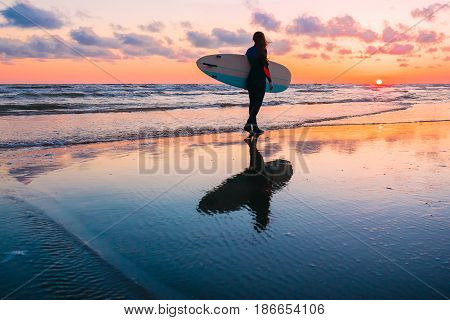 Young and sporty girl go to surfing. Beautiful woman in wetsuit and sunset on ocean