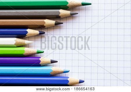 Colored pencils for drawing on the sheet of paper in a cage. Concept hidden leader school creativity drawing.