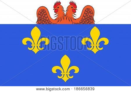 Flag of Versailles is a city in the Yvelines departement in Ile-de-France region France. Vector illustration