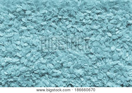 the textured background from granular flakes of an abstract form of pale blue color of a tifana