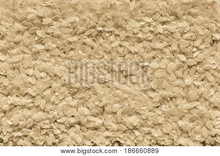 the textured background from granular flakes of an abstract form of pale color