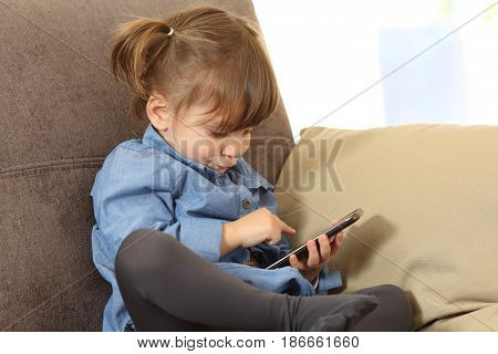 Concentrated baby playing games with a smart phone on line sitting on a sofa in the living room at home