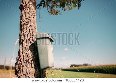 Vintage dutch mailbox attached to tree in rural summer landscape.
