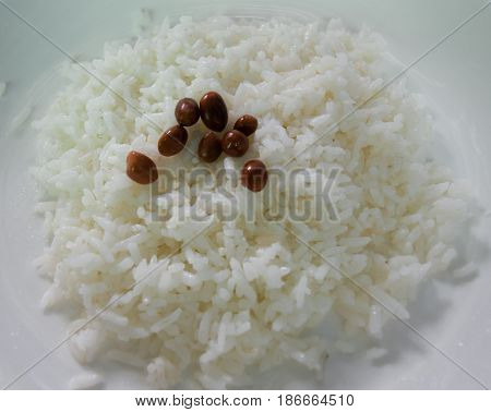 COLOR PHOTO OF PLAIN COOKED RICE TOPPING WITH FRIED PEANUTS
