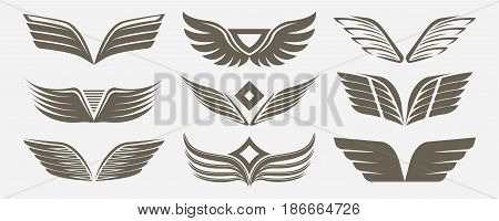 Wing icon set isolated on white background vector illustration. Winged design elements for company logo or brand. Abstract tattoo element.