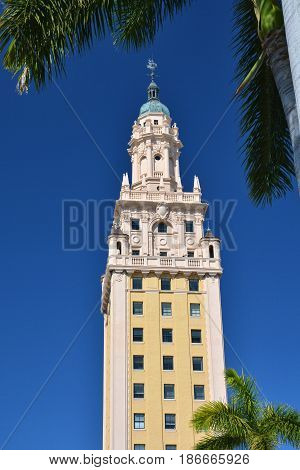 Freedom tower in Miami, palm trees and blue sky