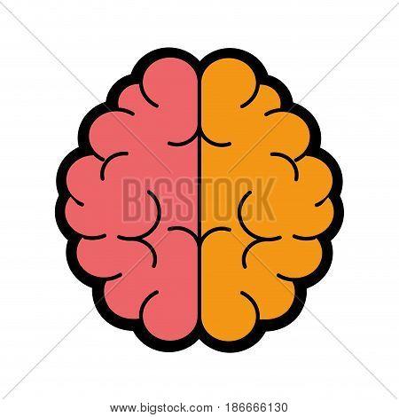 brain icon over white background. colorful design. vector illustration