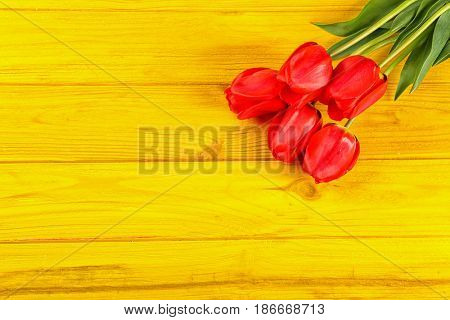 Bouquet of beautiful tulips on color wooden background