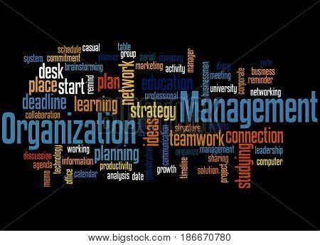 Organization Management, Word Cloud Concept 3
