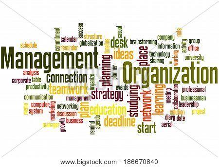 Organization Management, Word Cloud Concept 4