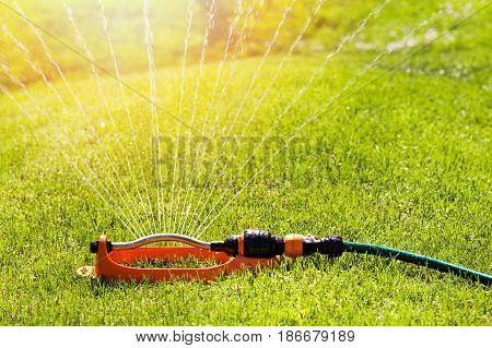 lawn sprinkler spaying water over green grass irrigation system