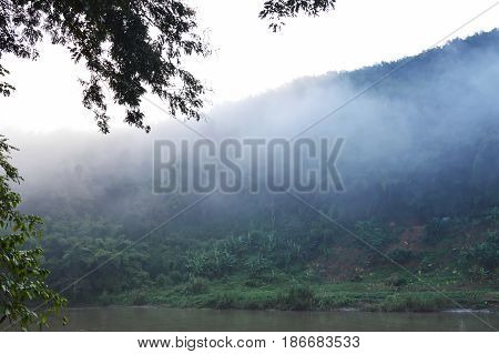 mist floating cover banana tree and mountain beside river