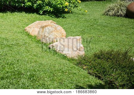 Fresh Summer Green Grass Garden stock photo