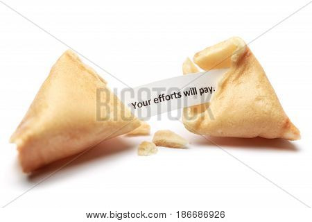 Isolated blank food crisp cookie fortune cookies chinese cookie prediction