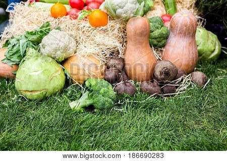 Organic farmers food market. Fresh vegetables on sale at the local open air market place, close-up, selective focus