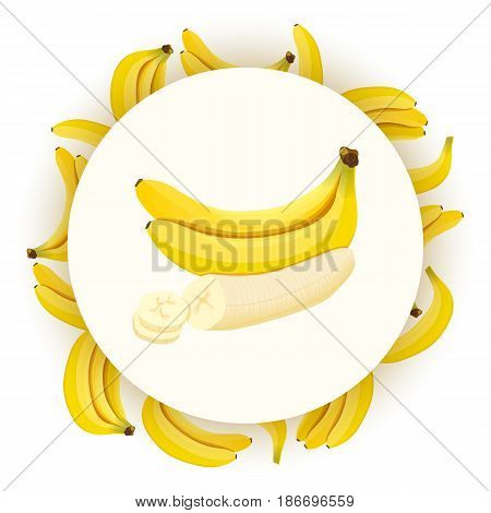 Bunch of Ripe bananas on white background. round badge. Whole, slices and skinned. Side view. Close up. vector illustration. for cooking, cosmetics, Herbal medicine, health care, ointments perfumery